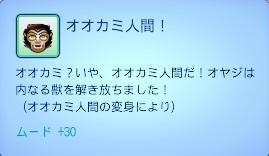 0307 (47).jpg