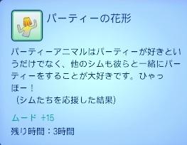 0309 (33).jpg