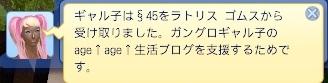 15070801 (8).jpg